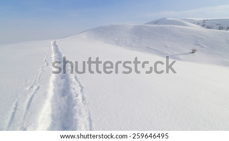 Trail in the snow in the mountains #259646495