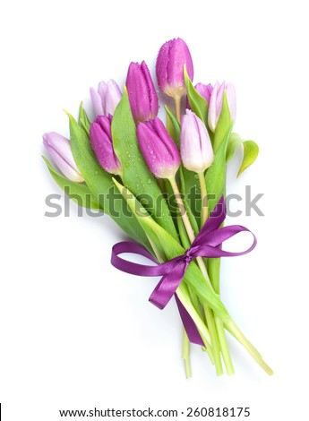 Purple tulips bouquet. Isolated on white background  #260818175