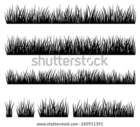 Stock vector illustration Set of silhouette of grass isolated on white background/Set of silhouette of grass isolated on white background/Stock vector illustration