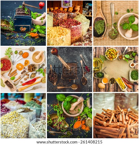 photo collage of herbs and spices #261408215