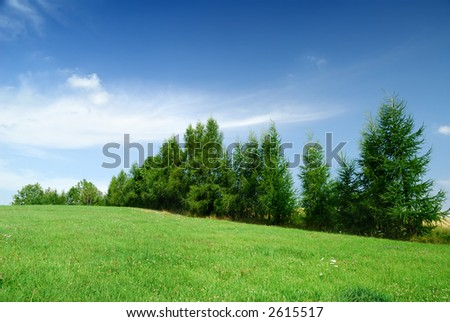 Mountain landscape - green filed, the blue sky and white clouds #2615517