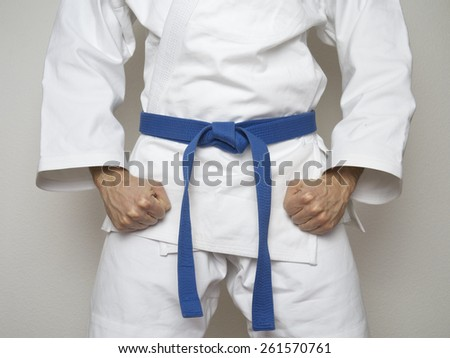 Fighter with blue belt martial arts Royalty-Free Stock Photo #261570761