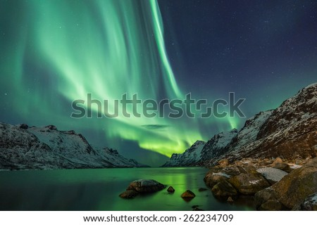 Northern Lights above waters edge #262234709