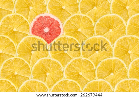 One Pink Grapefruit Slice Stand Out Of Yellow Lemon Slices Royalty-Free Stock Photo #262679444