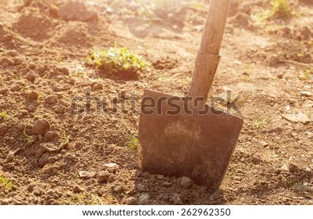 Shovel in the garden #262962350