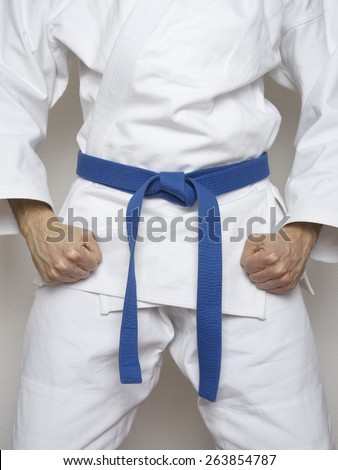 standing fighter blue belt martial arts white suit  Royalty-Free Stock Photo #263854787