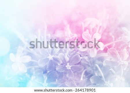colorful flowers in soft color and blur style on mulberry paper texture for background #264178901