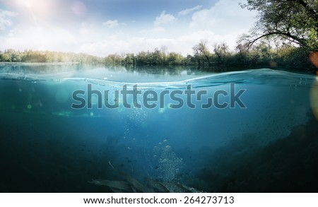 Design template with underwater part Royalty-Free Stock Photo #264273713