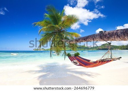 Perfect tropical paradise beach of seychelles island with palm trees and hammock Royalty-Free Stock Photo #264696779