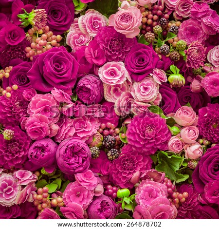 Abstract background of flowers. Close-up. #264878702