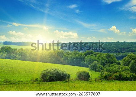 green field and blue sky with light clouds #265577807