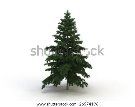 fir object #26574196