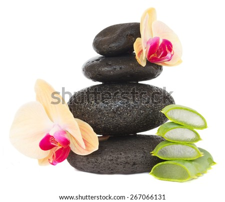 massage black stones with orchids and aloe pieces  isolated on white background #267066131