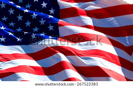 Flag of the USA   Royalty-Free Stock Photo #267522383