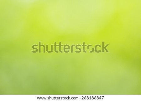 Natural green blurred background Used for text input #268186847