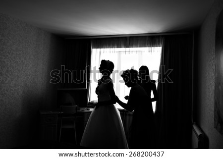 silhouette of the Bride Dresses  #268200437