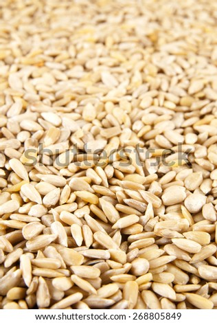 Sunflower seeds background #268805849