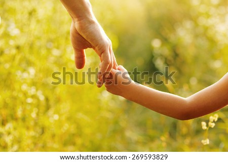 a parent holds the hand of a small child #269593829