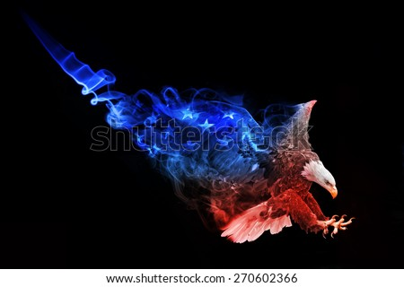 beautiful image of a bald eagle.. animal kingdom. flying bird. wildlife picture. great  tattoo. american flag. stars and stripes. amazing american symbol.