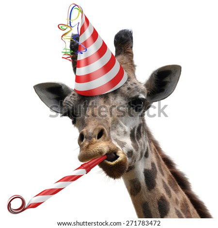 Funny giraffe party animal making a silly face and blowing a noisemaker