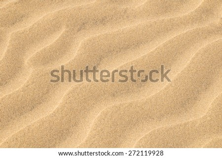 Texture Sand Dune Desert in Gran Canaria Island Spain #272119928
