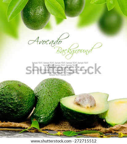 Photo of avocado with leaves and slice with white space for text #272715512