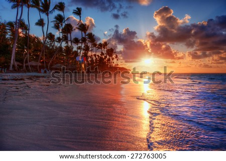 Palm trees blowing in the sea breeze at sunset on a luxurious sandy beach shore #272763005