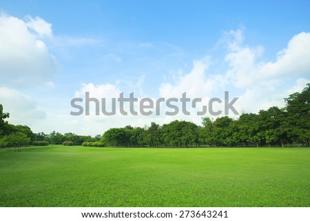 landscape of  grass field and green environment public park use as natural  background,backdrop #273643241