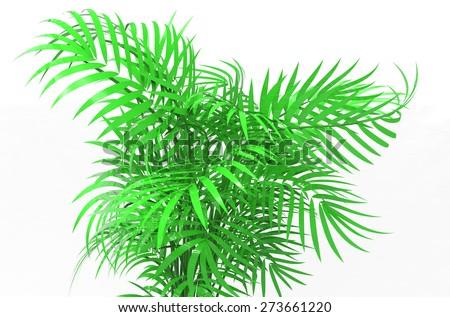 palm plants #273661220