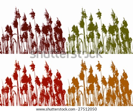 Reed in four colors #27512050