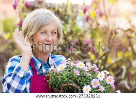 Beautiful senior woman planting flowers in her garden #275328251
