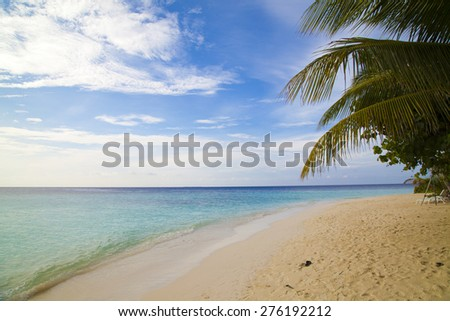 Beautiful beach landscape at  in the Maldives #276192212