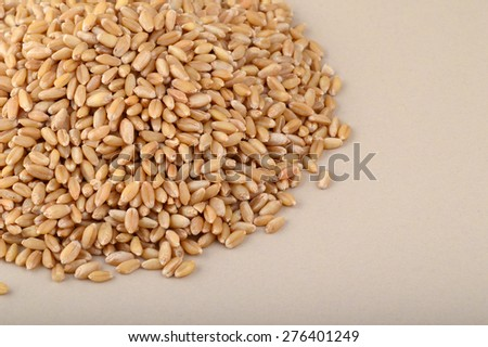 Heap of Wheat grains   #276401249