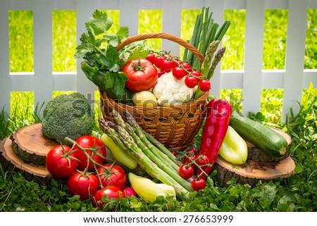 Vegetables in the garden #276653999