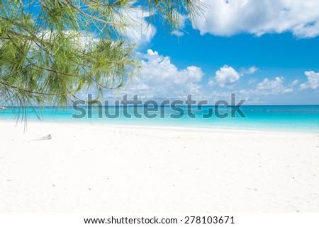 blue sky with beach sea and leaf #278103671