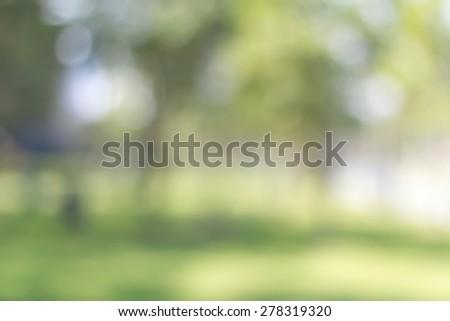 blur garden lights background. natural background.