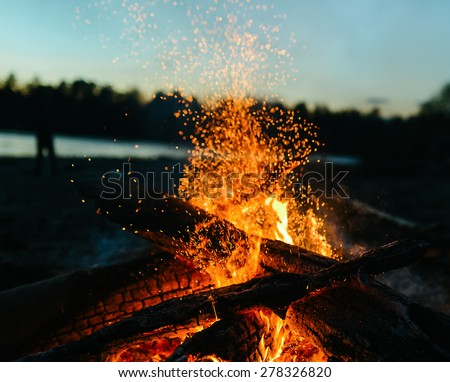 fire in nature . bokeh from the fire . blurred backgrounds . Space views. #278326820