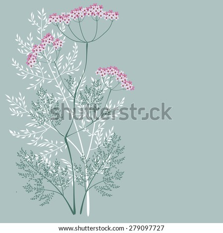 Valerian, a flowering meadow plants on a green background #279097727