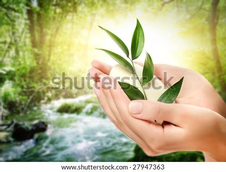 Human hands holding organic soap #27947363