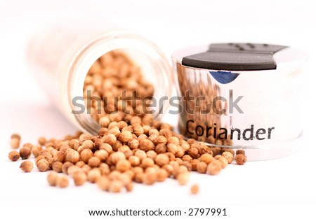 coriander and shaker 2 #2797991