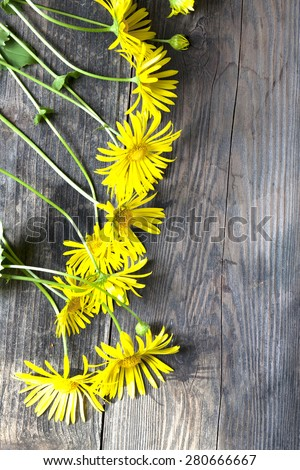 Forest Yellow flowers on old wooden background #280666667