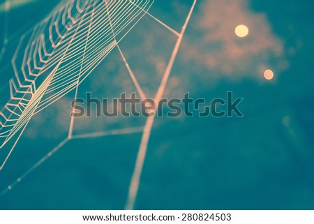 Partial blur view of empty spider web with fine lines in front of obscured light blue cave background with copy space #280824503
