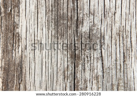 Wood background  #280916228