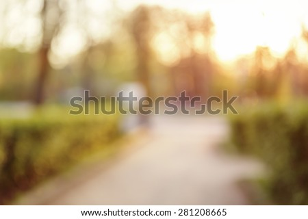 blurred bokeh background in city park spring time