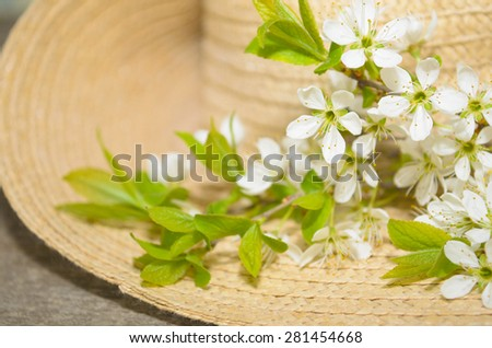 branches of blooming trees on a background of straw hat #281454668