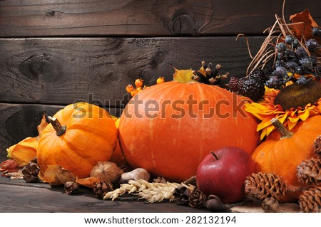 Thanksgiving - different pumpkins with nuts, berries and grain in front of wooden board #282132194