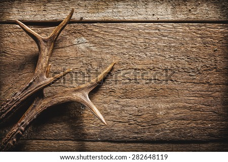 High Angle View of Deer Antlers Against Rustic Wooden Background with Copy Space