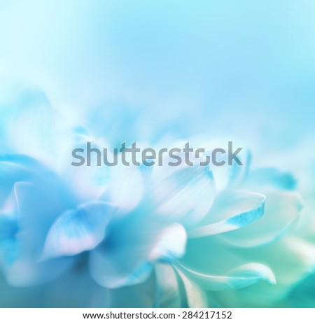 Soft focus flower background with copy space. Made with lens-baby and macro-lens. #284217152