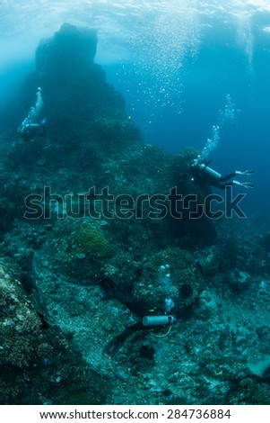 Scuba divers explore a rocky reef off the coast of Sulawesi, Indonesia. This area is part of the Coral Triangle and is home to more marine organisms than anywhere else on Earth. #284736884