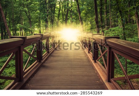 old wooden bridge in  deep forest, natural vintage background